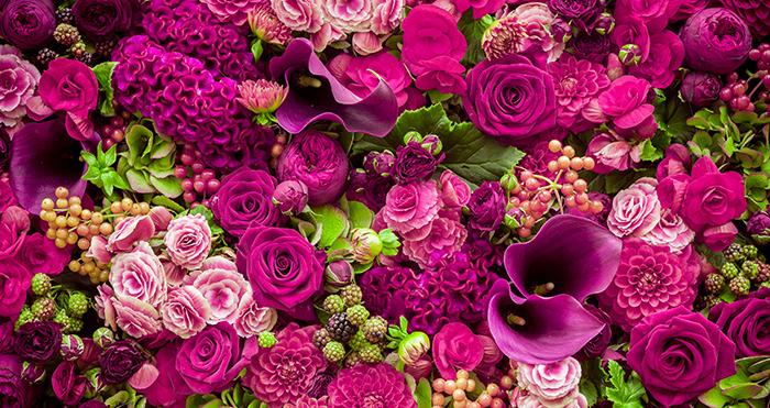פרחים ומשמעותם